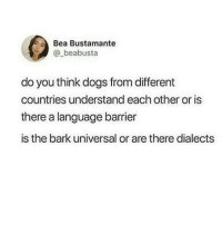 Dogs, Memes, and 🤖: Bea Bustamante  @_beabusta  do you think dogs from different  countries understand each other or is  there a language barrier  is the bark universal or are there dialects bork