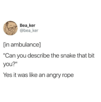"Memes, Snake, and Angry: Bea ker  bea_ker  in ambulancel  ""Can you describe the snake that bit  you?""  Yes it was like an angry rope"