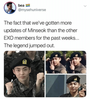 EXO memes: bea  @mysehuniverse  The fact that we've gotten more  updates of Minseok than the other  EXO members for the past weeks...  The legend jumped out.  18 EXO memes