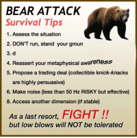 "Dank, Meme, and Run: BEAR ATTACK  Survival Tips  1. Assess the situation  2. DON'T run, stand your groun  3. d  4. Reassert your metaphysical awareness  5. Propose a trading deal (collectible knick-knacks  are highly persuasive)  6. Make noise (less than 50 Hz RISKY but effective)  8. Access another dimension (if stable)  As a last resort, FIGHT!!  but low blows will NOT be tolerated <p>Tips via /r/dank_meme <a href=""http://ift.tt/2zuIChy"">http://ift.tt/2zuIChy</a></p>"