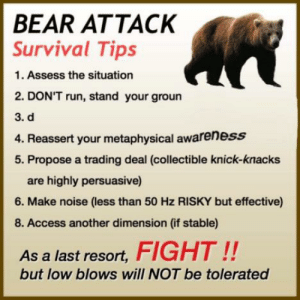 https://t.co/gVYjmJvRXT: BEAR ATTACK  Survival Tips  1. Assess the situation  2. DON'T run, stand your groun  3. d  4. Reassert your metaphysical awareness  5. Propose a trading deal (collectible knick-knacks  are highly persuasive)  6. Make noise (less than 50 Hz RISKY but effective)  8. Access another dimension (if stable)  As a last resort,FIGHT!!  but low blows will NOT be tolerated https://t.co/gVYjmJvRXT