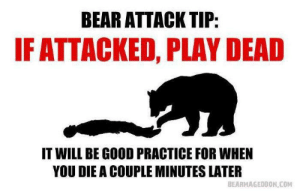 Bear, Good, and Com: BEAR ATTACK TIP:  IF ATTACKED, PLAY DEAD  IT WILL BE GOOD PRACTICE FOR WHEN  YOU DIE A COUPLE MINUTES LATER  BEARMAGEDDON,COM Practice makes perfect.