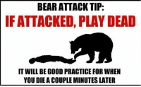 Memes, Bear, and Bears: BEAR ATTACK TIP:  IF ATTACKED, PLAY DEAD  IT WILL BE GOOD PRACTICE FOR WHEN  YOU DIE ACOUPLE MINUTES LATER