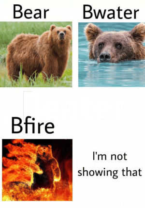 I've been posting a lot of memes but cmon I have a lot of good ideas: Bear  Bwater  Bfire  I'm not  showing that I've been posting a lot of memes but cmon I have a lot of good ideas