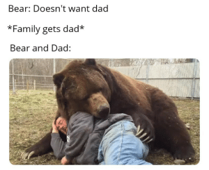 Dad, Family, and Bear: Bear: Doesn't want dad  *Family gets dad  Bear and Dad: Ah yes the infamous tale of bear and dad