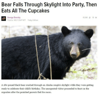 skylight: Bear Falls Through Skylight Into Party, Then  Eats All The Cupcakes  George Dvorsky  Fled to: HOLY CRAP WTF Today 6:40am  134010  A 180-pound black bear crashed through an Alaska couple's skylight while they were getting  ready to celebrate their child's birthday. The unexpected visitor proceeded to feast on the  cupcakes after the panicked parents fled the room.