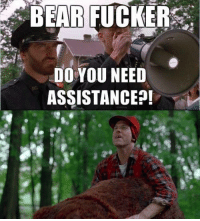Funny Bear Pictures: BEAR FUCKER  DO YOU NEED  ASSISTANCE?!
