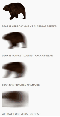 Funny, Memes, and Mood: BEAR  IS APPROACHING AT  ALARMING SPEEDS  BEAR IS GO FAST LOSING TRACK OF BEAR  BEAR HAS REACHED MACH ONE  WE HAVE LOST VISUAL ON BEAR 35 Great Pics And Memes to Improve Your Mood - Funny Gallery | eBaum's World