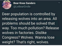 Deer, Too Much, and Bear: Bear Knee Sanders  @LeBearGirdle  Deer population is controlled by  releasing wolves into an area. All  problems should be solved that  way. Too much pollution? Release  wolves in factories. Dislike  Congress? Wolves. Wanna lose  weight? That's right, wolves. Genius