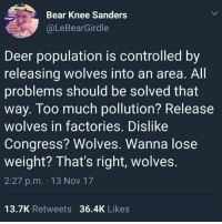 Deer, Too Much, and Bear: Bear Knee Sanders  @LeBearGirdle  Deer population is controlled by  releasing wolves into an area. All  problems should be solved that  way. Too much pollution? Release  wolves in factories. Dislike  Congress? Wolves. Wanna lose  weight? That's right, wolves  2:27 p.m. 13 Nov 17  13.7K Retweets 36.4K Likes Wolf down that idea.