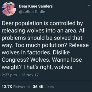 thedarkbunny: voidbat:  nehirose:   callmebliss:   pursuit43: I have in the past and continue to approve of this method Hey guys I have an idea about how to control what's going on in the White House   is it wolves?    it is wolves.   (source) : Bear Knee Sanders  @LeBearGirdle  Deer population is controlled by  releasing wolves into an area. All  problems should be solved that  way. Too much pollution? Release  wolves in factories, Dislike  Congress? Wolves. Wanna lose  weight? That's right, wolves  2:27 p.m. 13 Nov 17  13.7K Retweets 36.4K Likes thedarkbunny: voidbat:  nehirose:   callmebliss:   pursuit43: I have in the past and continue to approve of this method Hey guys I have an idea about how to control what's going on in the White House   is it wolves?    it is wolves.   (source)