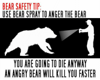Memes, 🤖, and Anger: BEAR SAFETY TIP  USE BEAR SPRAY TO ANGER THE BEAR  YOU ARE GOING TO DIE ANYWAY  AN ANGRY BEAR WILL KILL YOU FASTER Just wanted to share this pic posted in the comments of one of our posts. Thanks John Garriga! This is awesome!