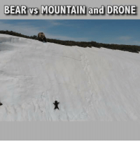 Me commentary on a baby bear overcoming a genuine obstacle and a dodgy obstacle. 🎙: BEAR vs MOUNTAIN and DRONE Me commentary on a baby bear overcoming a genuine obstacle and a dodgy obstacle. 🎙