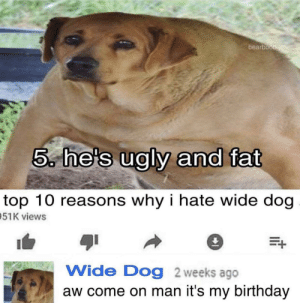 me🎈irl: bearboo  5, he's ualv and fat  top 10 reasons why i hate wide dog  51K views  Wide Dog 2 weeks ago  aw come on man it's my birthday me🎈irl