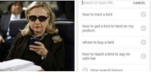 !!! ,KHVFKJBV WKJ   !!! : Bearch or type URL  CANCEL  how to train a birc  how to get a bird to land on my  podium  where to buy a bird  how to teach a bird to say imO  with her  O View search historv !!! ,KHVFKJBV WKJ   !!!