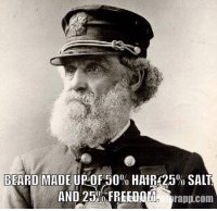 Beard, Memes, and Waves: BEARD MADE UP OF 50% HAIR 25% SALT  LINI  rapp.com beard Freedom salt saltysailor navy sail boat ship port sea ocean waves
