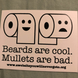 Beards and mullets: Beards are cool.  Mullets are bad.  www.awebsiteyouwill nevergoto.org Beards and mullets