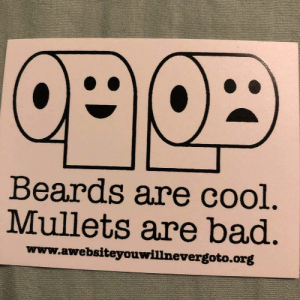 Meirl: Beards are cool.  Mullets are bad.  www.awebsiteyouwillnevergoto.org Meirl