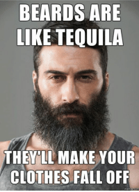 Is this beard sexy? What do you think...: BEARDS ARE  LIKE TEQUILA  THE LL MAKE YOUR  CLOTHES FALL OFF  memes com Is this beard sexy? What do you think...