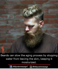 Memes, Water, and Beards: Beards can slow the aging process by stopping  water from leaving the skin, keeping it  moisturized  f/didyouknowpagel@didyouknowpage
