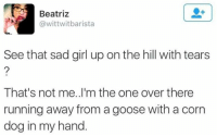 Beatriz: Beatriz  @wittwitbarista  See that sad girl up on the hill with tears  That's not me..I'm the one over there  running away from a goose with a corn  dog in my hand