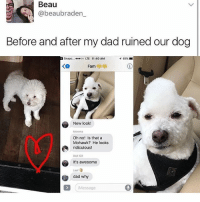 i make good decisions~mulch: Beau  beaubraden  Before and after my dad ruined our dog  Snapc  ...oo LTE 11:40 AM  Fam  New look!  Oh no! Is that a  Mohawk? He looks  ridiculous!  Dad ICE  It's awesome  dad why  Message i make good decisions~mulch