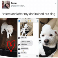 Get your dad 😂: Beau  beaubraden  Before and after my dad ruined our dog  snapc.... ...oo TE 11:40 AM  T 61%  Fam  New look  Oh no! Is that a  Mohawk? He looks  ridiculous!  Dad ICE  It's awesome  dad why  i Message Get your dad 😂
