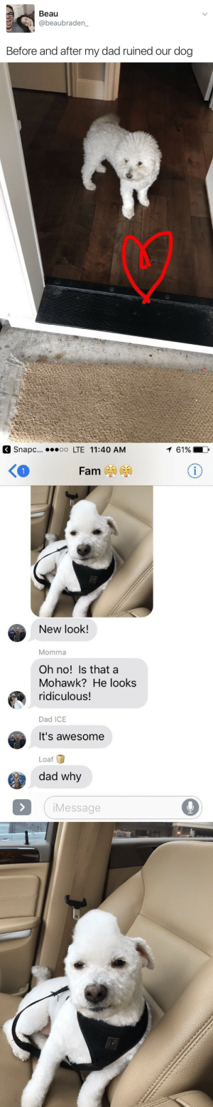 Its Awesome: Beau  @beaubraden_  Before and after my dad ruined our dog   napc... o LTE 11:40 AM  1 61%  く。  New look!  Momma  Oh no! Is that a  Mohawk? He looks  ridiculous!  Dad ICE  It's awesome  Loaf  dad why  iMessage