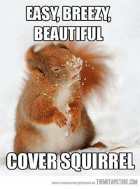 BEAUTIFUL  COVER SOURRE,  more awesome pictures at  THEMETAPICTURE COM