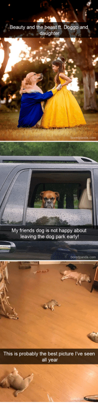 Dog snapsvia @boredpanda: Beauty and the beast ft. Doggo an  daughter  boredpanda.com   My friends dog is not happy about  leaving the dog park early!  boredpanda.com   This is probably the best picture I've seen  all year  boredpa  nda. Dog snapsvia @boredpanda
