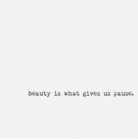 What, Beauty, and Pause: beauty is what gives us pause.