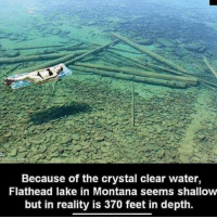 4chan, Illuminati, and Memes: Because of the crystal clear water,  Flathead lake in Montana seems shallow  but in reality is 370 feet in depth. - - underworld cosmos melodicdeathmetal galaxy planets awakened enlightened psychedelic philosophy InFlames atheism atheist progressivemetal pendulum infectedmushroom infantannihilator deathcore truthseeker 4chan illuminati robswire cyberpunk jetfuelcantmeltsteelbeams space nihilism communism capitalism conspiracy anonymous anarchy - Backup: @psychedelic.fountain.v2 -