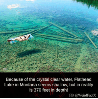Weird, Montana, and Water: Because of the crystal clear water, Flathead  Lake in Montana seems shallow, but in reality  is 370 feet in depth!  FB Ga Weird FactX