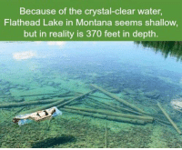 Memes, Montana, and 🤖: Because of the crystal-clear water,  Flathead Lake in Montana seems shallow  but in reality is 370 feet in depth. https://t.co/O6GqrG9jZH