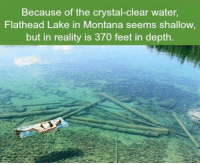 Memes, Montana, and 🤖: Because of the crystal-clear water,  Flathead Lake in Montana seems shallow  but in reality is 370 feet in depth. https://t.co/xBgZb2qiIq