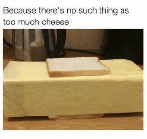 Dank, Too Much, and 🤖: Because there's no such thing as  too much cheese