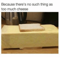 Dank, Too Much, and True: Because there's no such thing as  too much cheese True