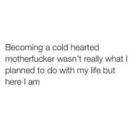 cold hearted: Becoming a cold hearted  motherfucker wasn't really what I  planned to do with my life but  here I am