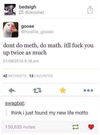 Doing Math: bedsigh  dick ochet  goose  @hostile goose  dont do meth, do math. itll fuck you  up twice as much  27/09/2013 5:16 pm  42  RETWEETS 13  FAVORITES  swagbat:  think i just found my new life motto  130,633 notes