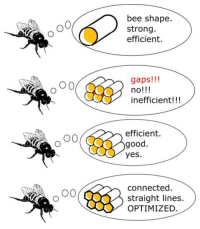 """Drunk, Connected, and Good: bee shape.  strong.  efficient.  0  gaps!!!  no!!!  inefficient!!!  efficient.  good.  yes.  connected  straight lines.  OPTIMIZED <p>OK I was drunk and bought shares in this. How fucked am I? via /r/MemeEconomy <a href=""""https://ift.tt/2r4E3DH"""">https://ift.tt/2r4E3DH</a></p>"""