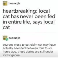 Life, Humans of Tumblr, and Never: beemojis  heartbreaking: local  cat has never been fed  in entire life, says local  Cat  beemojis  sources close to cat claim cat may have  actually been fed between four to six  hours ago. these claims are still under  investigation.