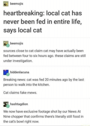 Cats, Fake, and Food: beemojis  heartbreaking: local cat has  never been fed in entire life,  says local cat  beemojis  sources close to cat claim cat may have actually been  fed between four to six hours ago. these claims are stil  under investigation.  hiddenlacuna  Breaking news: cat was fed 20 minutes ago by the last  person to walk into the kitchen.  Cat claims fake mews.  hashtagdion  We now have exclusive footage shot by our News At  Nine chopper that confirms there's literally still food in  the cat's bowl right now.