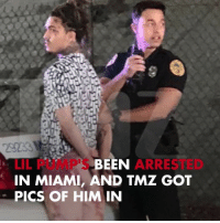 Memes, Been, and 🤖: BEEN  ARRESTED  LIL PUMP'S  IN MIAMI, AND TMZ GOT  PICS OF HIM IN Lil Pump got arrested in Miami 😱 tmz lilpump miami