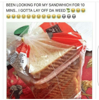 Dude got no chill😂😂: BEEN LOOKING FOR MY SANDWHICH FOR 10  MINS.. I GOTTA LAY OFF DA WEED Dude got no chill😂😂