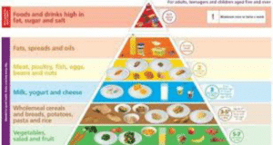 The food pyramide is just a simple tierlist: beenagers.und childe  Foods and drinks high in  fat, sugar and sal  Fats, speeads and ols  Moat, pooltry, fsh, eggs.  bea and nuts  Mik, yogurt and cheese  Wholemeal cereals  and breads, potatoes,  pasta and rice  Vegetables  saled and fruit The food pyramide is just a simple tierlist