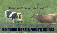 Beep Beep!!!: Beep Beep! I'm a milk truck!  Go home Bessie, you're drunk! Beep Beep!!!