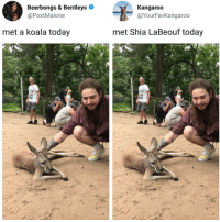This is epic | Follow @aranjevi for more!: Beerbongs & Bentleys  @PostMalone  Kangaroo  @YourFavKangarod  met a koala today  met Shia LaBeouf today This is epic | Follow @aranjevi for more!