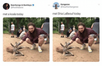 gotta love twitter https://t.co/c12GxKXZW1: Beerbongs & Bentleys  @PostMalone  Kangaroo  @YourFavKangaroo  met a koala today  met Shia LaBeouf today gotta love twitter https://t.co/c12GxKXZW1