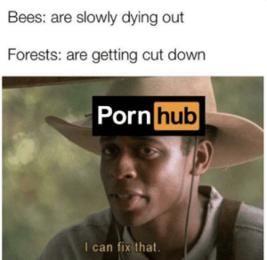 PORNHUB = 🌳: Bees: are slowly dying out  Forests: are getting cut down  Porn hub  I can fix that. PORNHUB = 🌳