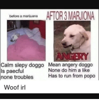 Bloods, Memes, and Marijuana: before a marijuana  AFTOR3MARUIONA  Calm slepy doggo Mean angery doggo  None do him a like  ls paecful  Has to run from popo  none troubles  Woof irl How can you see into my eyes, like open doors Leading you down into my core Where I've become so numb, without a soul My spirit's sleeping somewhere cold Until you find it there and lead it back home Wake me up, wake me up inside I can't wake up, Wake me up inside, save me, Call my name and save me from the dark, wake me up Bid my blood to run, I can't wake up Before I come undone, save me Save me from the nothing I've become Now that I know what I'm without You can't just leave me Breathe into me and make me real, bring me to life Wake me up, wake me up inside I can't wake up, Wake me up inside, save me, Call my name and save me from the dark, wake me up Bid my blood to run, I can't wake up Before I come undone, save me